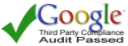 Google Audit